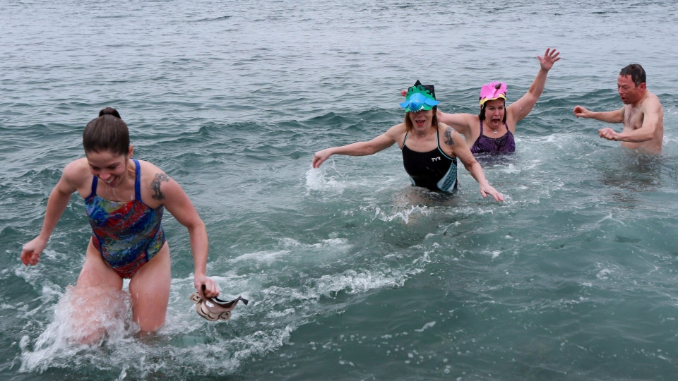 Kristy Hayward, (left to right) Fiona Seymour, Wanda Highmore, and John Seymour were part of a small group who braved the chilly temperatures and took part in a Polar Bear Dip in John's, Newfoundland and Labrador, Friday, Jan. 1, 2016.  (Paul Daly / THE CANADIAN PRESS)