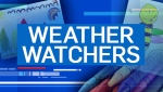 Weather Watchers