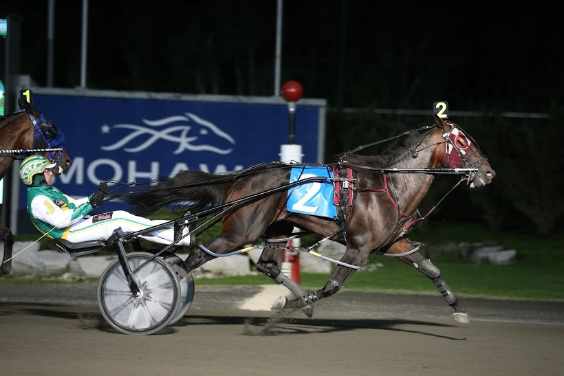 'Apprentice Hanover' is seen in a photo from Woodbine Entertainment Group.