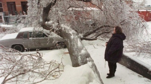 A woman looks at a giant tree that crashed onto a car as the second ice storm of the week gripped Montreal Thursday.  (Ryan Remiorz / THE CANADIAN PRESS)