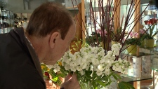 Procedure helps Ottawa man regain sense of smell,