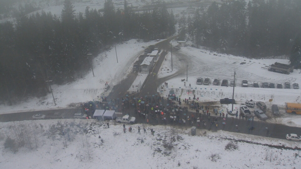 An aerial view shows hundreds of protesters crowd the street near a contaminated soil dump that sits on a slope above Shawnigan Lake, Wed., Jan. 6, 2015. (CTV Vancouver Island)