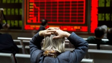 Chinese stocks plunge, triggering market halt