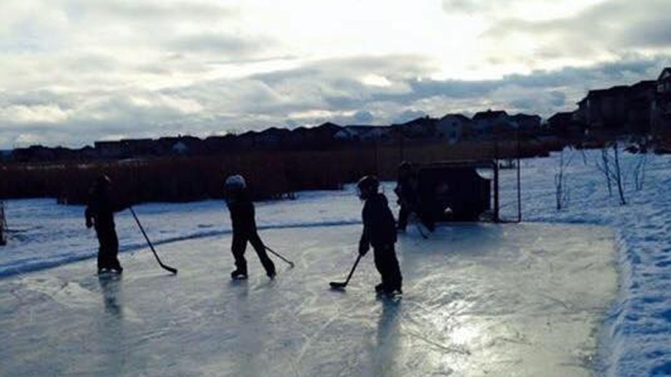 Children skate on a rink built on Poplar Lake, in Edmonton, Alta., in this image posted to Morgann Tomlinson's Facebook page.