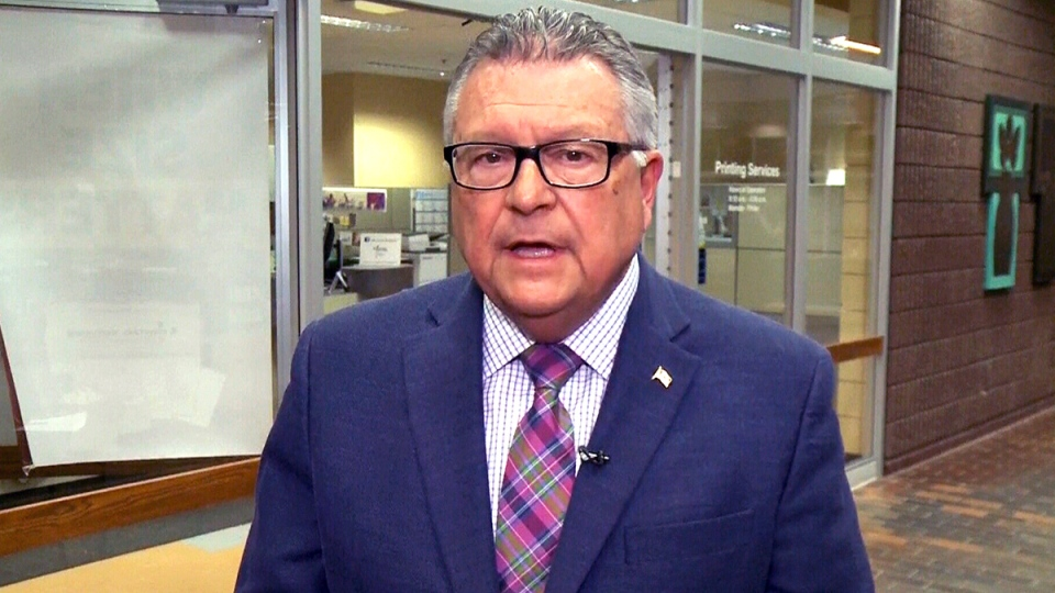 Public Safety Minister Ralph Goodale speaks on CTV's Power Play on Friday, Jan. 8, 2016.