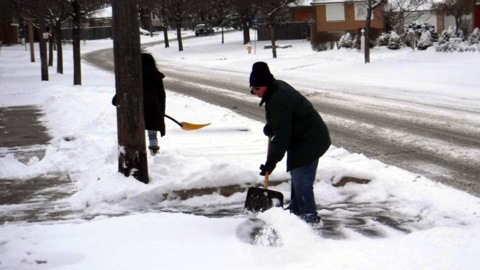 Toronto residents shovel snow from a driveway on Tuesday, Jan. 12, 2016. (George Stamou / CTV Toronto)