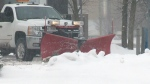 CTV Kitchener: Plow drivers welcome snow