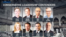 Conservative leadership: possible candidates