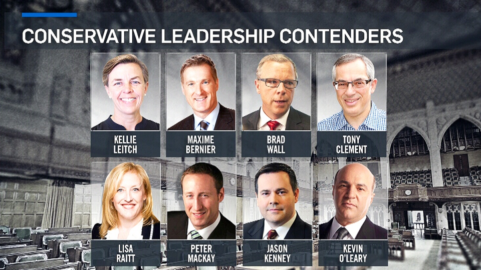 Eight possible Conservative leadership candidates are shown in this image from CTV News Channel.