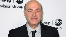 Kevin O'Leary mulls Conservative leadership run