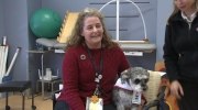 Canada AM: Benefits of therapy dogs
