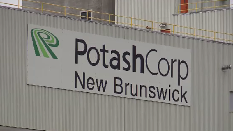 PotashCorp has announced that it is indefinitely suspending its Picadilly mine operation near Sussex, N.B.