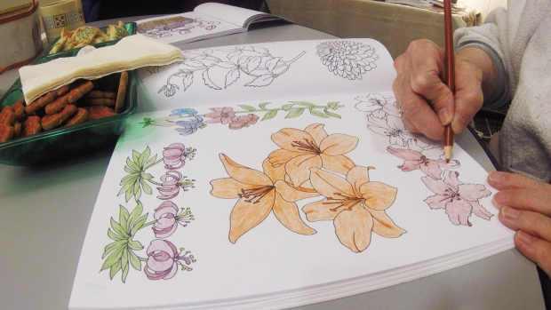 Libraries Social Groups Help Popularize Adult Colouring Craze