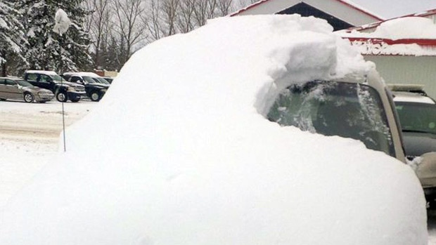 A woman reportedly had her car stolen while she was brushing the snow off of it.