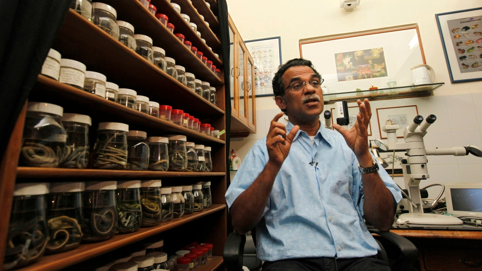 In this Monday, Feb. 20, 2012 file photo, Delhi professor Sathyabhama Das Biju speaks to the Associated Press in his laboratory in New Delhi, India. A group of scientists, led by Biju, has rediscovered a type of tree frog once believed to be extinct. (AP Photo / Mustafa Quraishi)