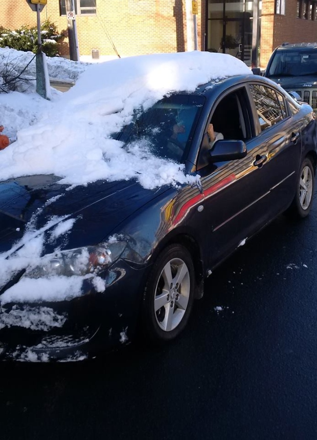 woman ticketed for driving snow covered car in halifax ctv news. Black Bedroom Furniture Sets. Home Design Ideas