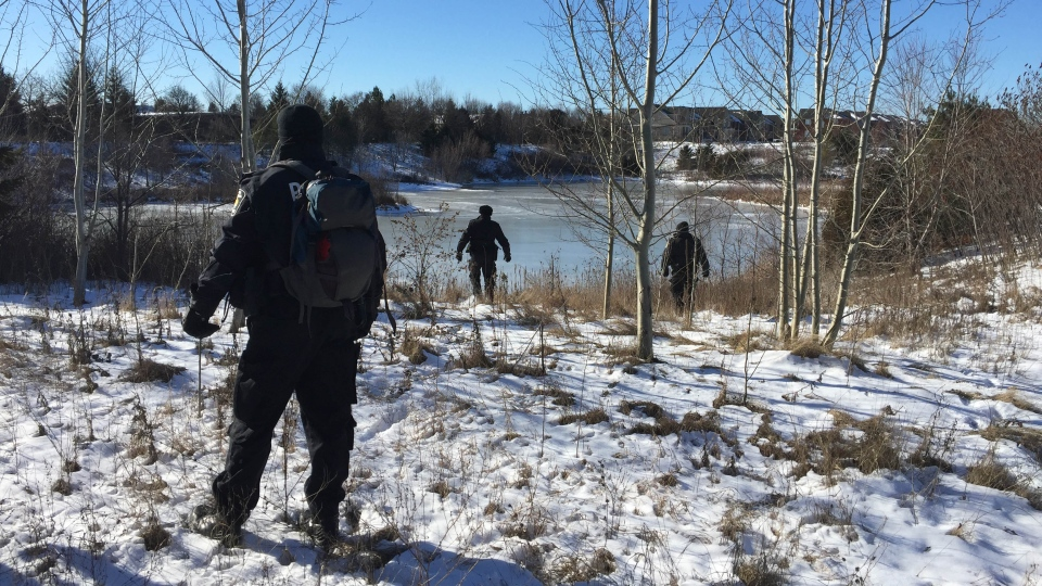 Police are seen as they conduct a ground search for missing Markham woman Taneesha Brown on Jan. 23, 2016.