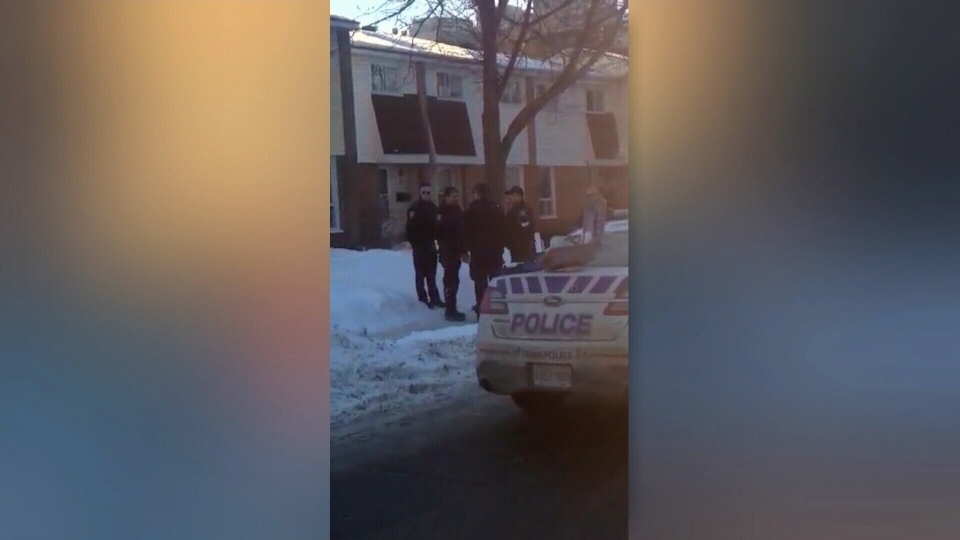 CTV Ottawa: Dog shot by police