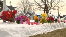 Flowers popping up in N.S. garden