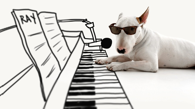 This 2013 photo provided by artist Rafael Mantesso shows his bull terrier, Jimmy Choo, with a piano keyboard that Mantesso has drawn in on the floor around him, at his studio in Belo Horizonte, Brazil. (Rafael Mantesso via AP)