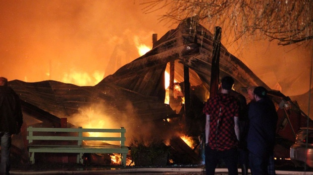 A total of 20 horses and 15 cats were rescued after flames broke out at Loranda Stables and Kitty Kottage in Delta, B.C. Amazingly, no one was hurt. (CTV)