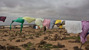 A Syrian refugee woman walks at an informal tented settlement near the Syrian border on the outskirts of Mafraq, Jordan, Saturday, Jan. 23, 2016. (AP Photo / Muhammed Muheisen)