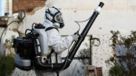 In this Jan. 26, 2016 photo, a municipal worker sprays insecticide to combat the Aedes aegypti mosquitoes that transmit the Zika virus, at the Imbiribeira neighborhood in Recife, Pernambuco state, Brazil. Brazil once succeeded in eliminating the Aedes, which is well adapted to humans, lives within people's homes and can breed in just a bottle cap of stagnant water.  (AP Photo/Felipe Dana)