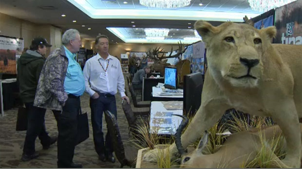 Displays at the African Hunting Expo in the Coast Plaza Hotel & Conference Center