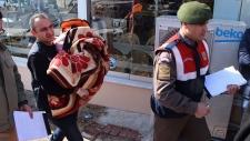 Migrants reach port in Turkish coastal town