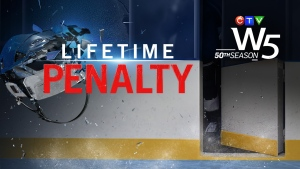 W5: Lifetime Penalty non-dated version