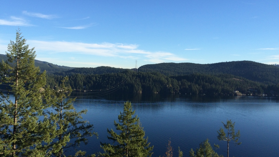 The gorgeous Quarry Rock lookout point along the North Shore's Baden Powell trail. (Katelyn Verstraten/CTV News).