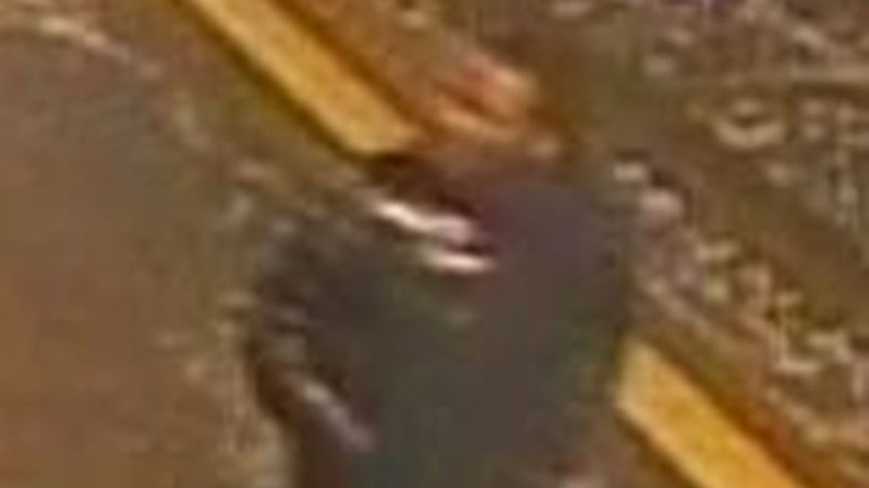 A suspect is shown in a shooting at Exhibition Place that occurred early Monday, Feb. 15, 2016. (Toronto police)