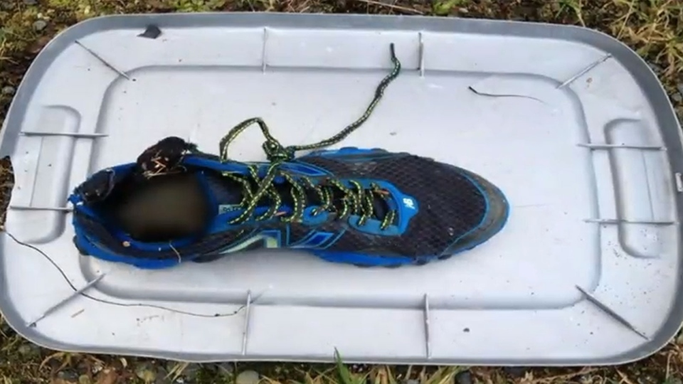 This shoe was found on a B.C. beach on Feb. 7.