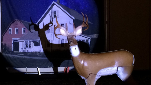 The Manitoba Wildlife Federation says the practice of using spotlights to hunt at night is becoming more common and poses a safety risk.