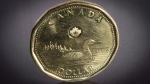 """A Canadian """"loonie"""" one-dollar piece is pictured in North Vancouver, B.C., on Jan. 23, 2015. (Jonathan Hayward / THE CANADIAN PRESS)"""