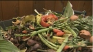 It's estimated that organics make up 40 per cent of waste at Brady Road Landfill. (File image)
