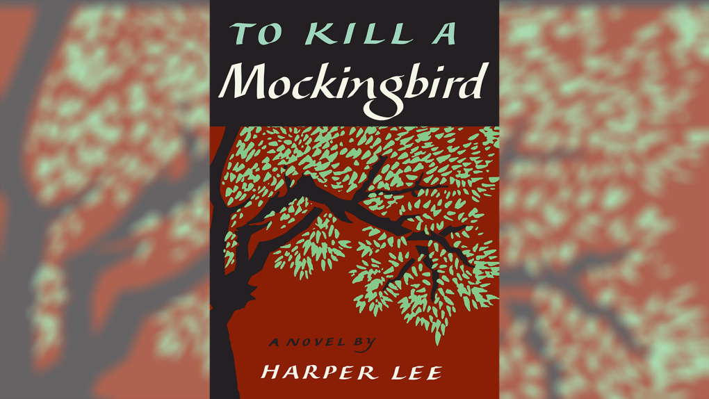 Ontario prof. suggests local school board reconsider use of 'To Kill a Mockingbird'