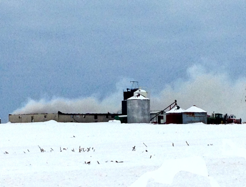 Smoke rises from a pig barn after a fire near Hensall, Ont. on Friday, Feb. 19, 2016. (Gerry Dewan / CTV London)