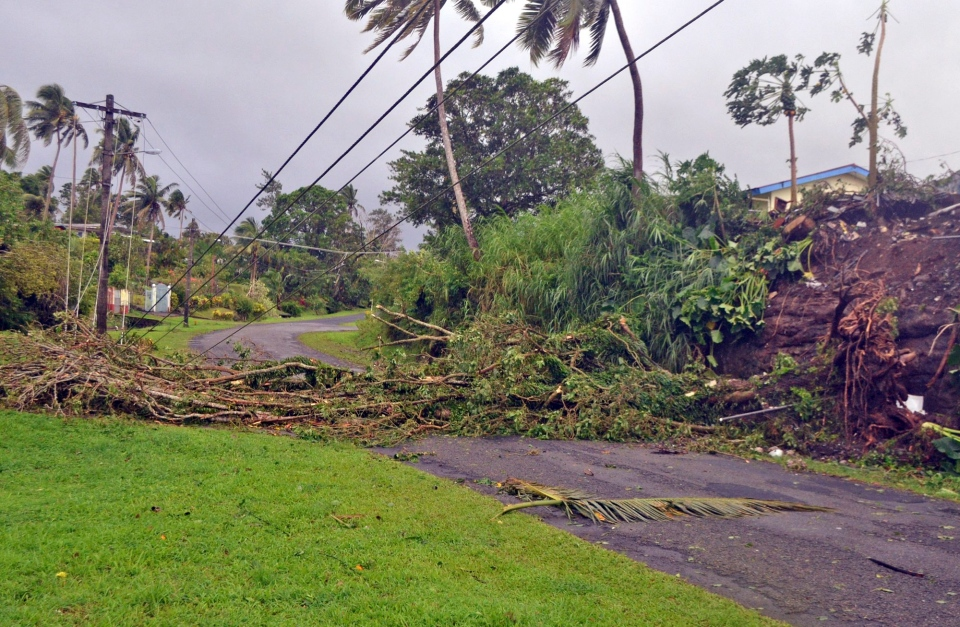 A tree lays across a road and power lines in Lami, Fiji, Sunday, Feb. 21, 2016, after cyclone Winston ripped through the country. (Jonacani Lalakobau/Fiji Times via AP)