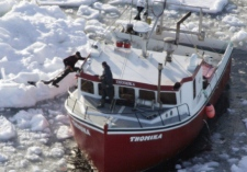 A seal hunter drags a harp seal along the ice to his boat in the Gulf of St. Lawrence Saturday March 25, 2006. (THE CANADIAN PRESS /Jonathan Hayward)