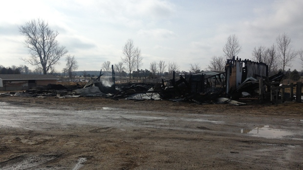 Rubble after a barn fire near Otterville. Police say nine horses died. Feb. 27, 2016. ( CTV Kitchener / Allison Tanner )