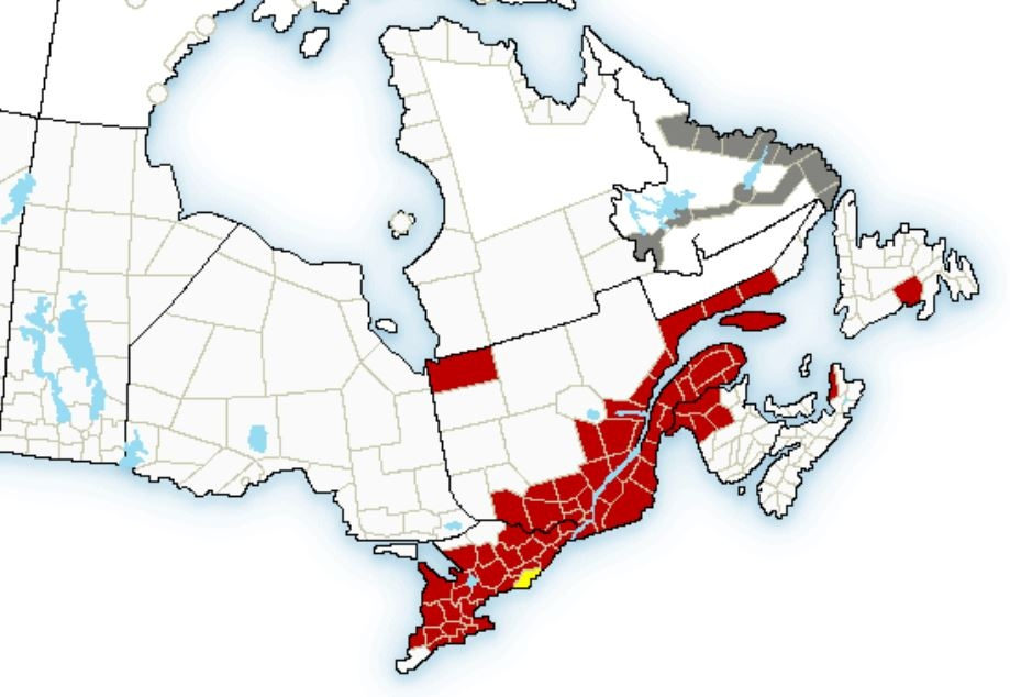 A map shows the areas of eastern Canada that are affected by weather advisories on Tuesday, March 1, 2016. (Environment Canada)
