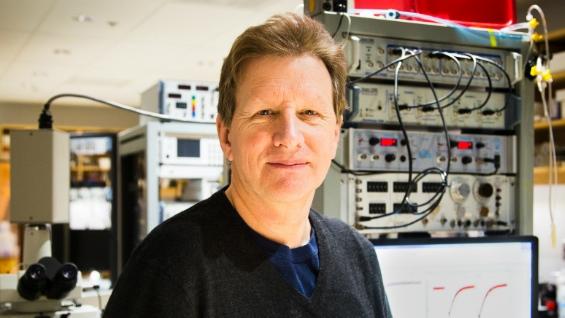 Graham Collingridge