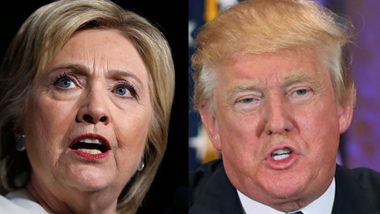 Democratic presidential candidate Hillary Clinton and republican candidate Donald Trump have vastly different resumes.