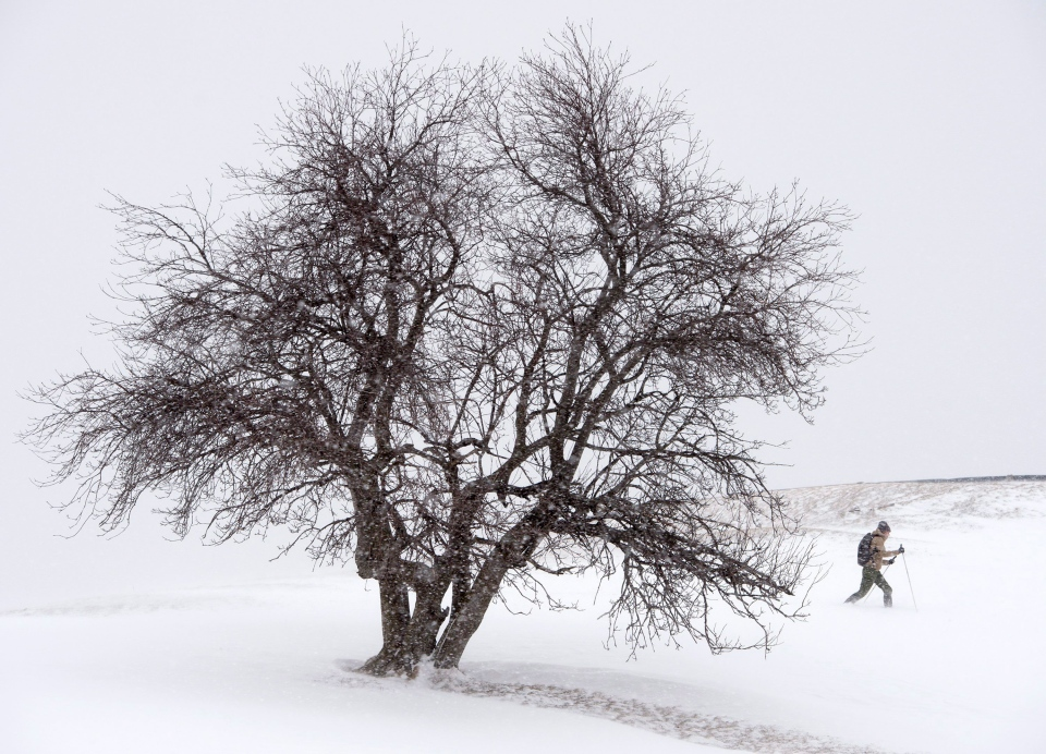 A cross country skier makes his way in Halifax on Saturday, March 5, 2016. (Andrew Vaughan/THE CANADIAN PRESS)
