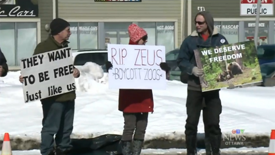 Anti-zoo protesters lined a county road near Ottawa on March 6, 2016.