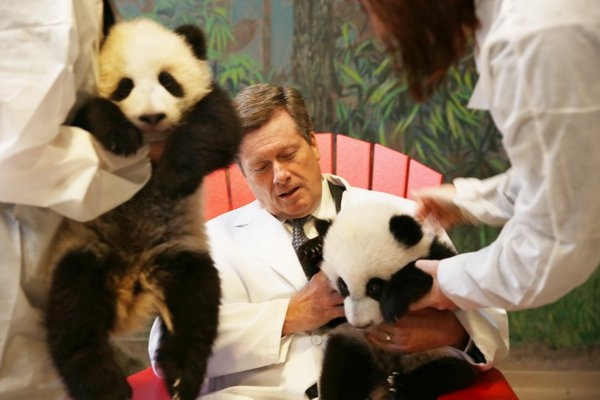 Toronto Mayor John Tory meets one of the zoo's panda cubs on Monday, March 7, 2016.