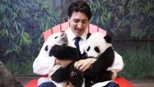 Trudeau with pandas Jia Panpan Jia Yueyue