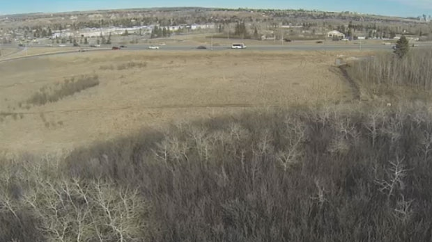 City council considers using names in the Blackfoot language for a new development near Canada Olympic Park.