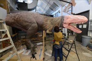 In this October 30, 2015 photo a specialist at the American Museum of Natural History in New York works on a model of a Yutyrannus for the Museum's upcoming exhibition, 'Dinosaurs Among Us.' (Roderick Mickens / American Museum of Natural History via AP)